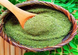 moringa nasıl yetiştirilir